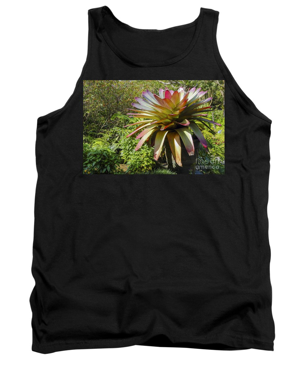 Monteverde Costa Rica Bromeliad Plant Tropical Plants Bloom Blooms Gardens Gardens Leaf Leaves Still Life Nature Tank Top featuring the photograph Tropical Bromeliad by Bob Phillips