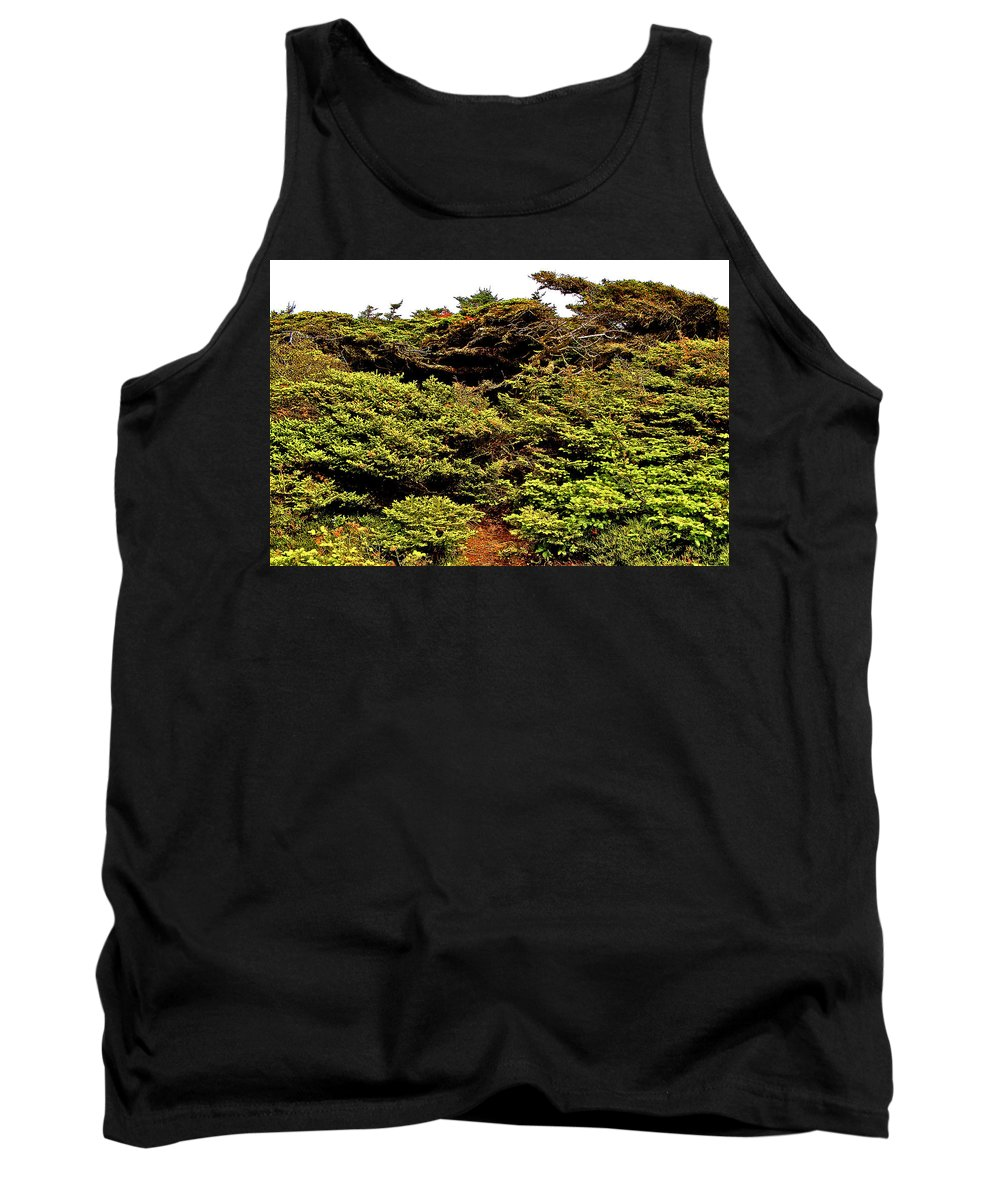 Tuckamore At Green Point Coastal Trail In Gros Morne Np Tank Top featuring the photograph Tuckamore At Green Point Coastal In Gros Morne Np-nl by Ruth Hager