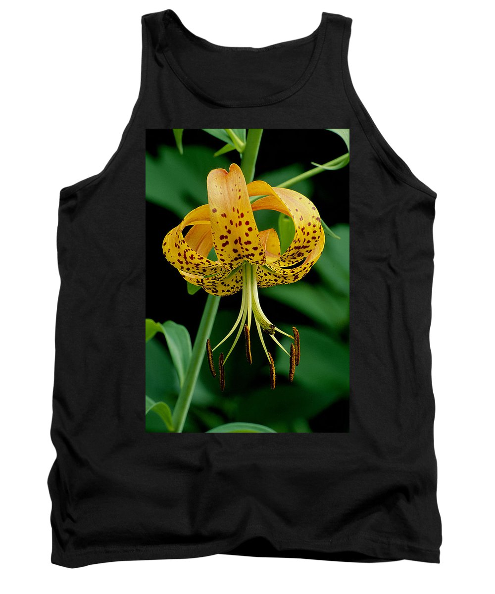 Wildflower Tank Top featuring the photograph Turk's Cap Lilly by Eric Albright