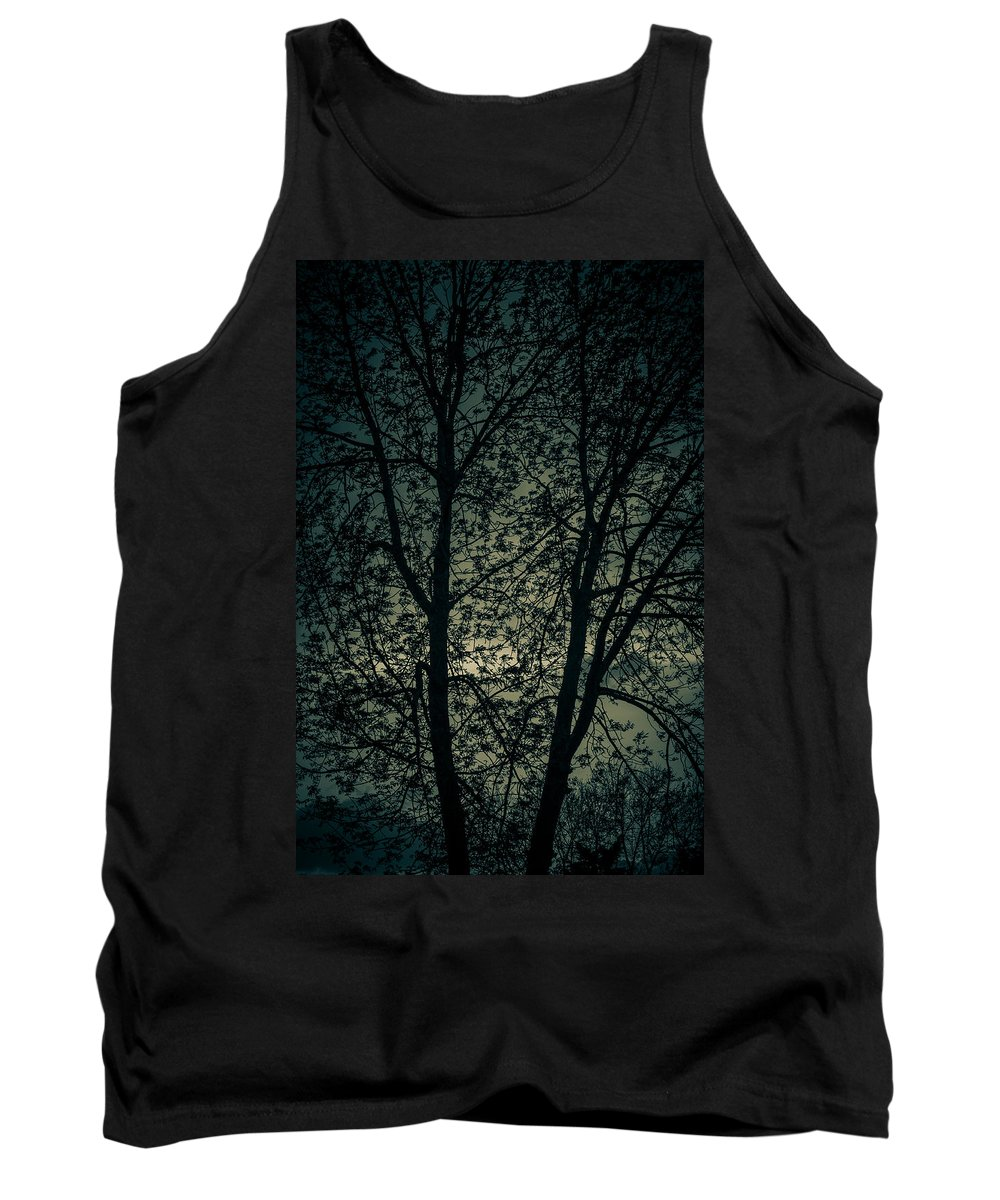 Sun Tank Top featuring the photograph Twilight Colors by Amel Dizdarevic