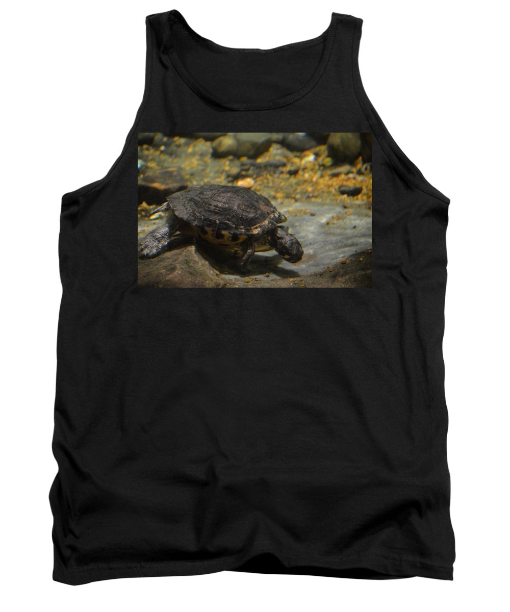 Underwater Turtle Tank Top featuring the photograph Underwater Turtle by Maria Urso