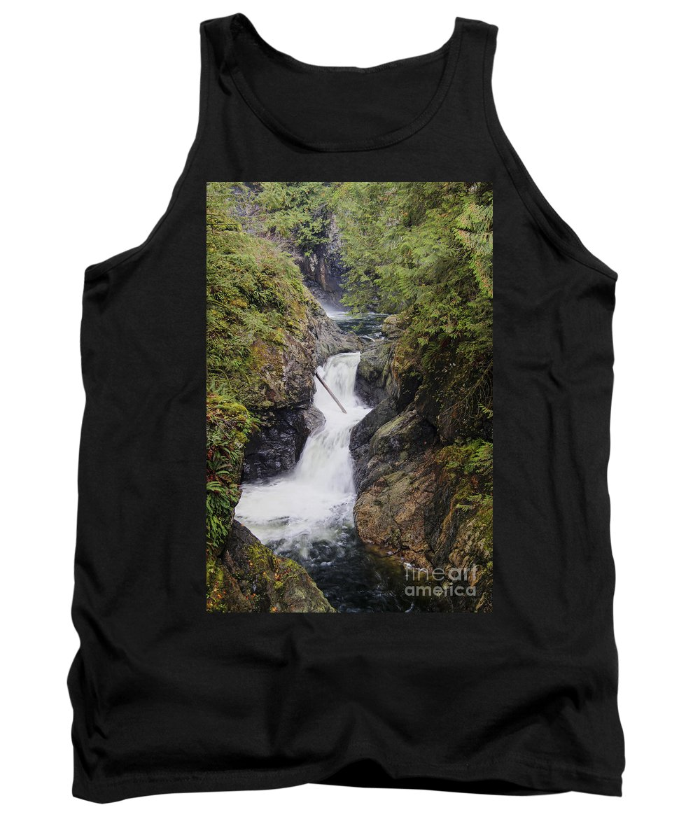 Landscape Tank Top featuring the photograph Upper Twin Falls by Darleen Stry