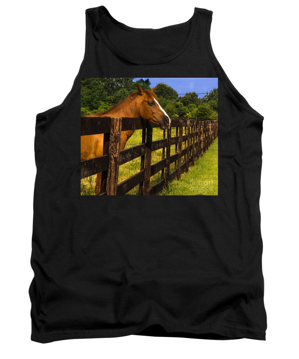Wait Tank Top featuring the photograph Waiting Patiently by Scott Hervieux
