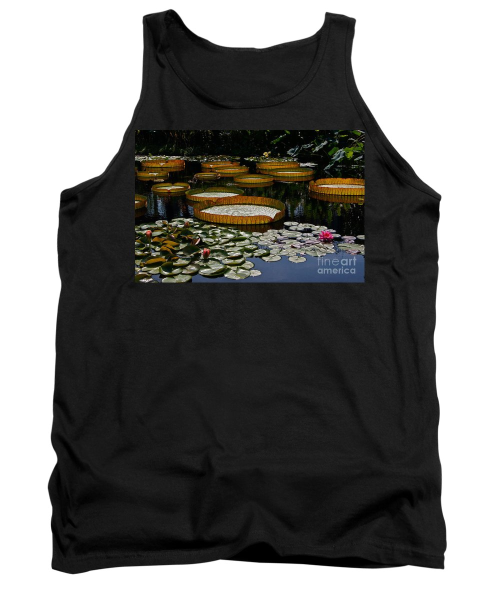 Tropical Waterlily Tank Top featuring the photograph Waterlilies All by Byron Varvarigos