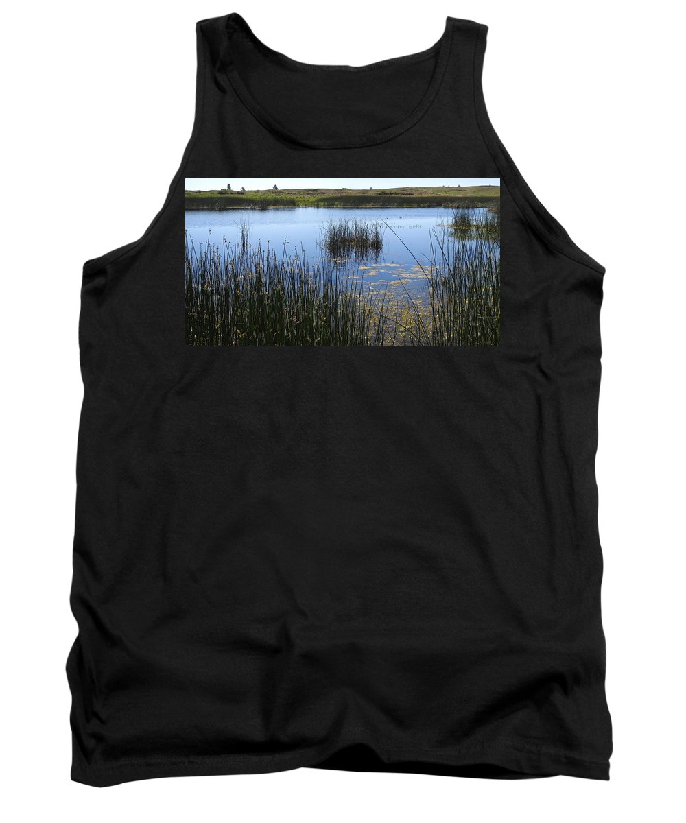 Summer Tank Top featuring the photograph Wetland Pond In Summer by Daniel Hagerman