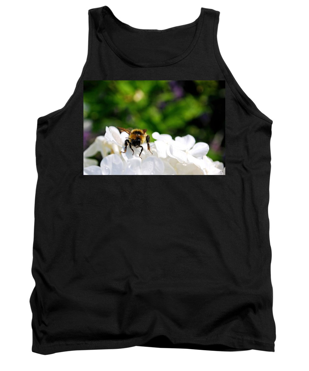 Flower Tank Top featuring the photograph What Are You Looking At by Lisa Knechtel