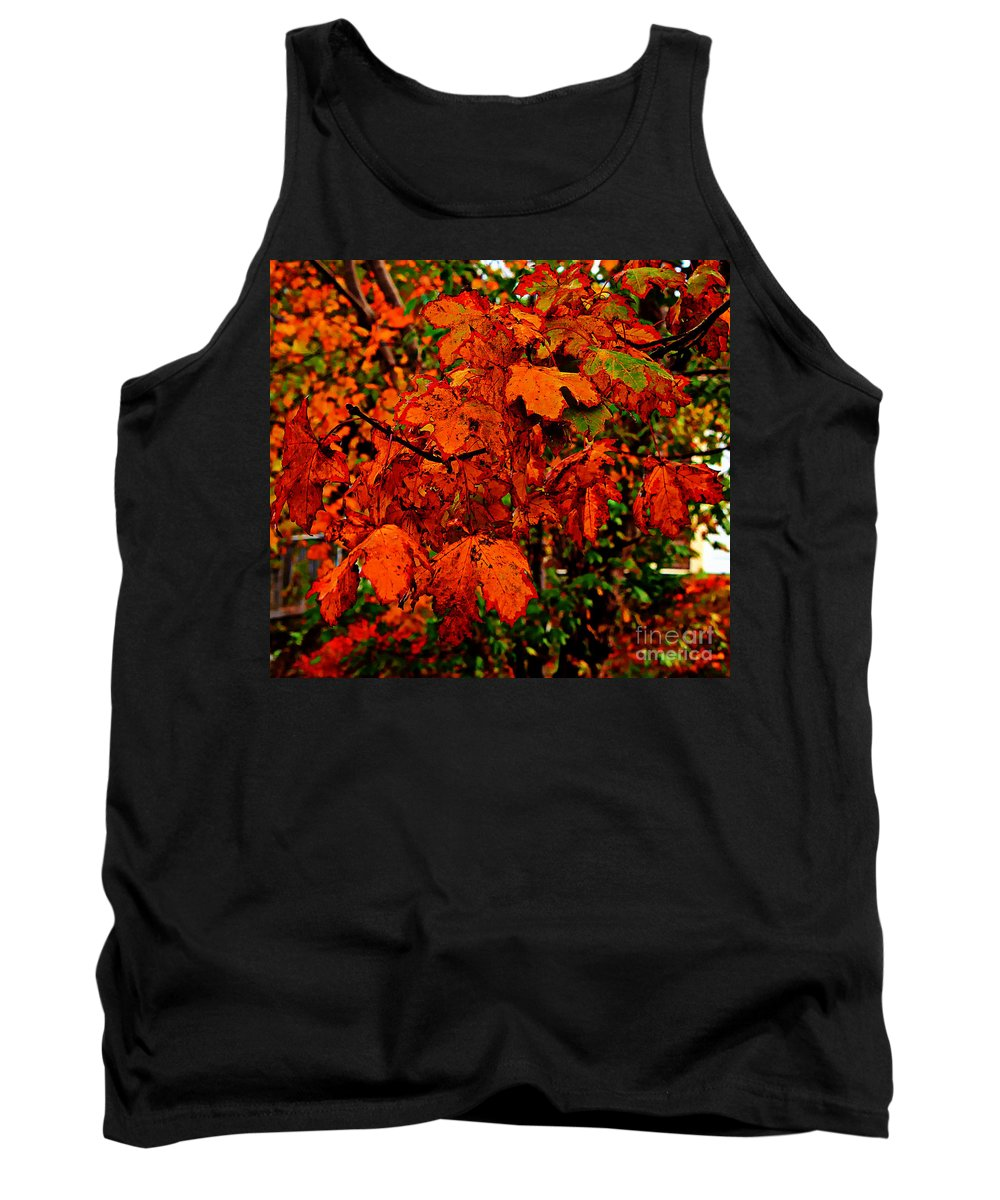 Orange Leaves Tank Top featuring the photograph Where Has All The Red Gone - Autumn Leaves - Orange by Barbara Griffin