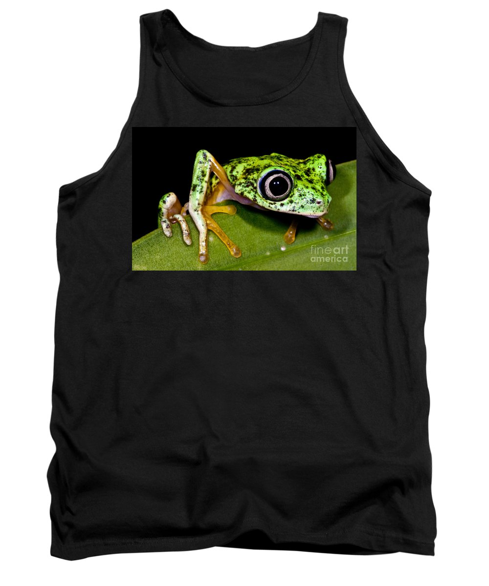 Agalychnis Lemur Tank Top featuring the photograph White-eyed Leaf Frog by Dante Fenolio