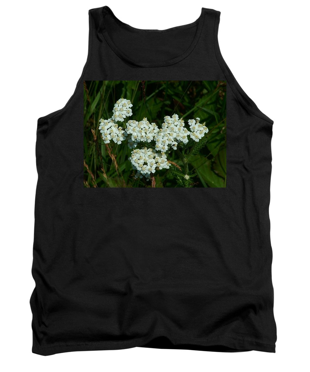 White Tank Top featuring the photograph White Flowers In Green Field by Geoffrey McLean