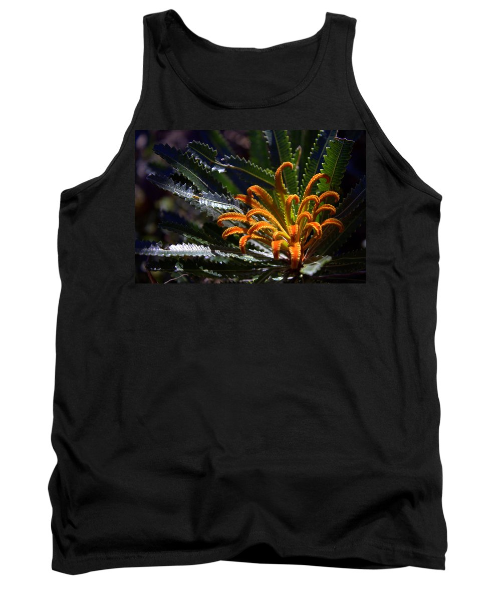 Banksia Tank Top featuring the photograph Who Am I by Miroslava Jurcik