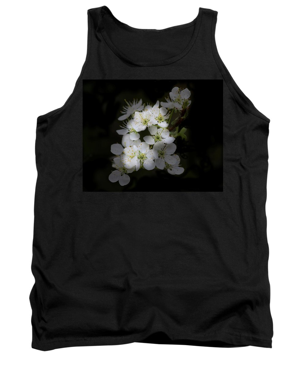 Flowers Tank Top featuring the photograph Wild Roses by TN Fairey