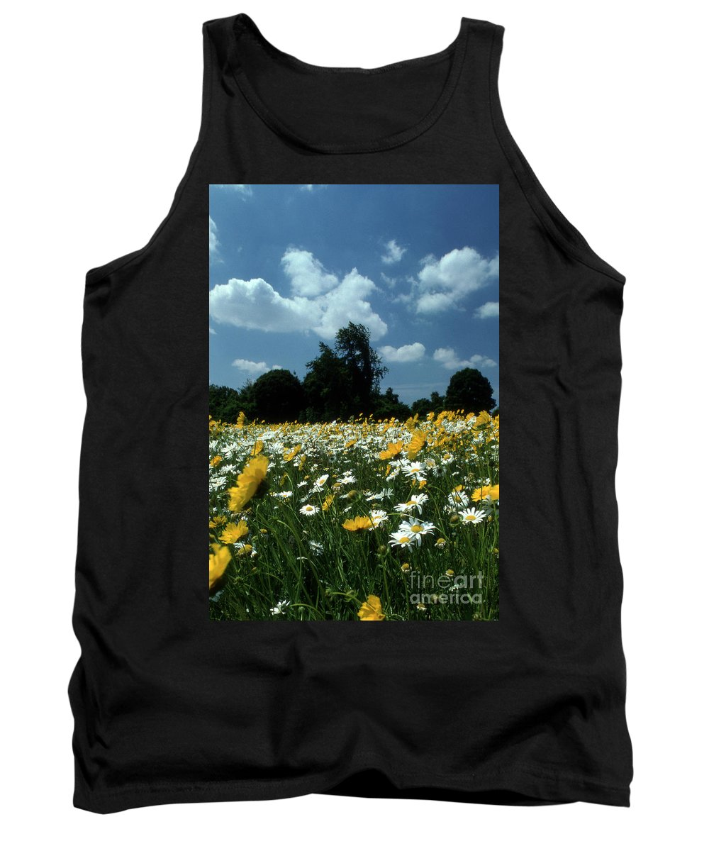 Pictures Of Flowers Tank Top featuring the photograph Wildflowers by Skip Willits