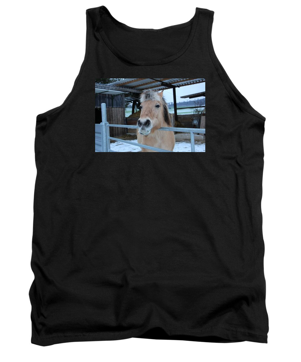 Horse Tank Top featuring the photograph Winter Horse by FL collection