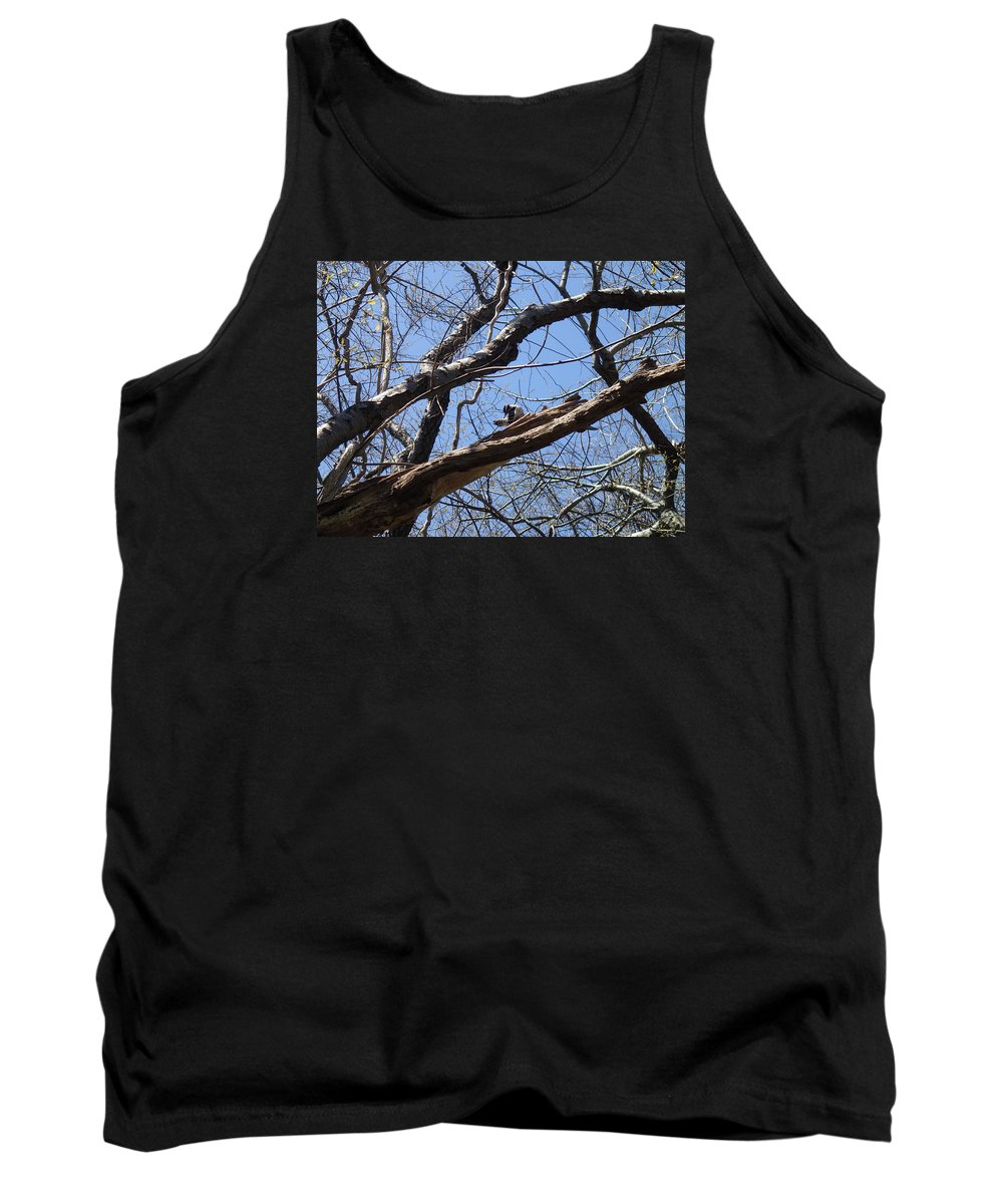 Nature Tank Top featuring the photograph Woody by Robert Nickologianis