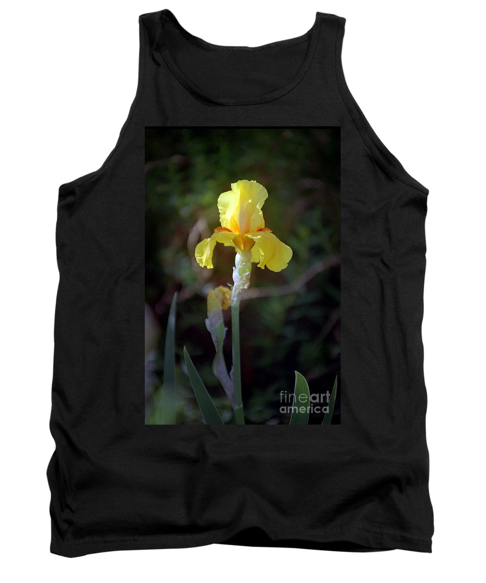 Iris Tank Top featuring the photograph Yellow Iris by Kathy McClure