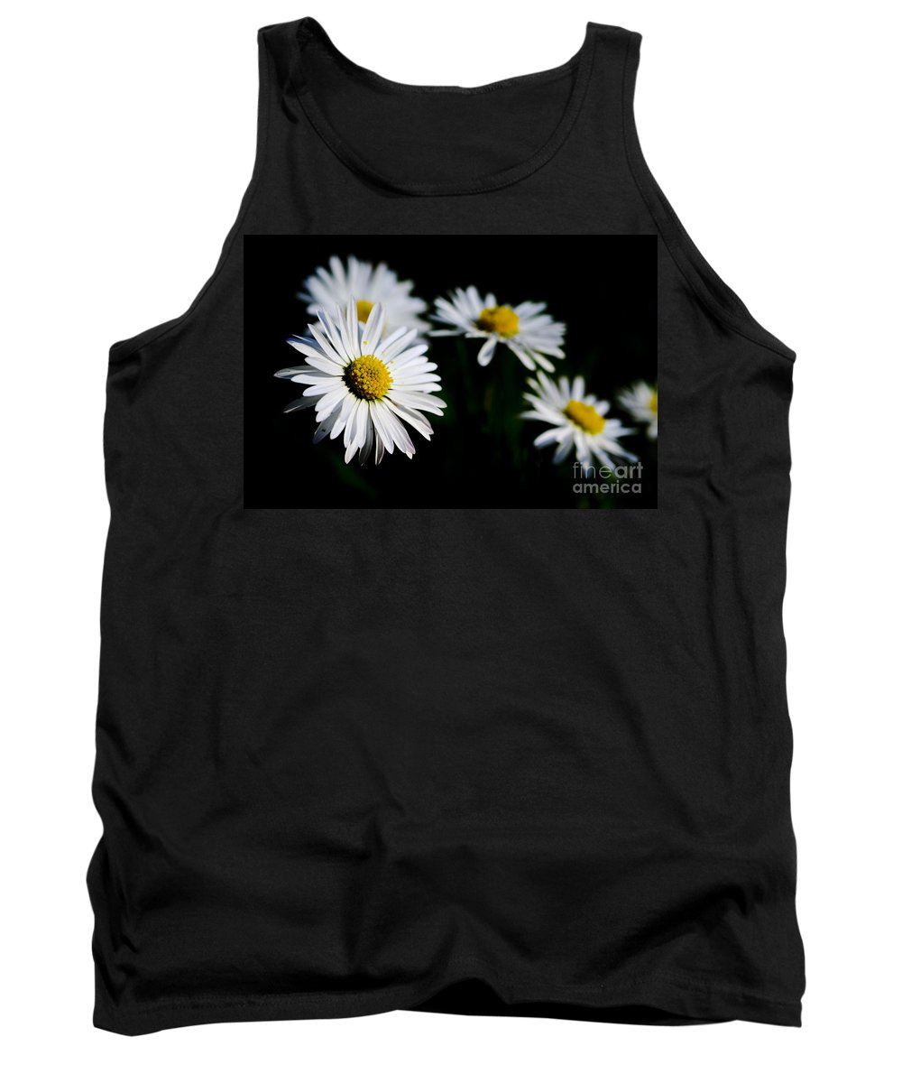 Flower Tank Top featuring the photograph Daisy Flowers by Mats Silvan