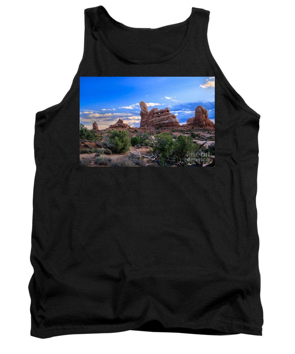 Arches National Park Tank Top featuring the photograph Eye View Of Arches by Robert Bales