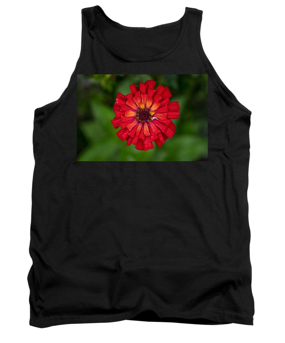 Flower Tank Top featuring the photograph Red Flower by Greg Nyquist