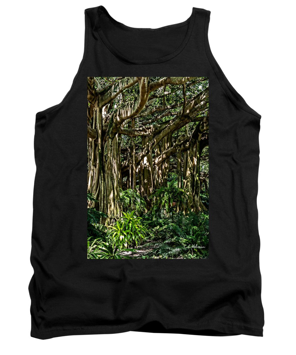 Christopher Holmes Photography Tank Top featuring the photograph 20120915-dsc09877 by Christopher Holmes