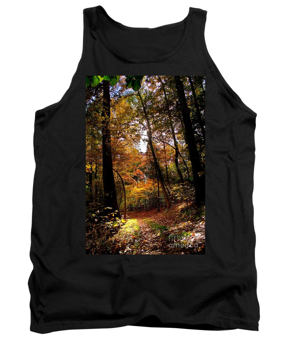 Fall Tank Top featuring the photograph A Walk In The Park by Beth Phifer