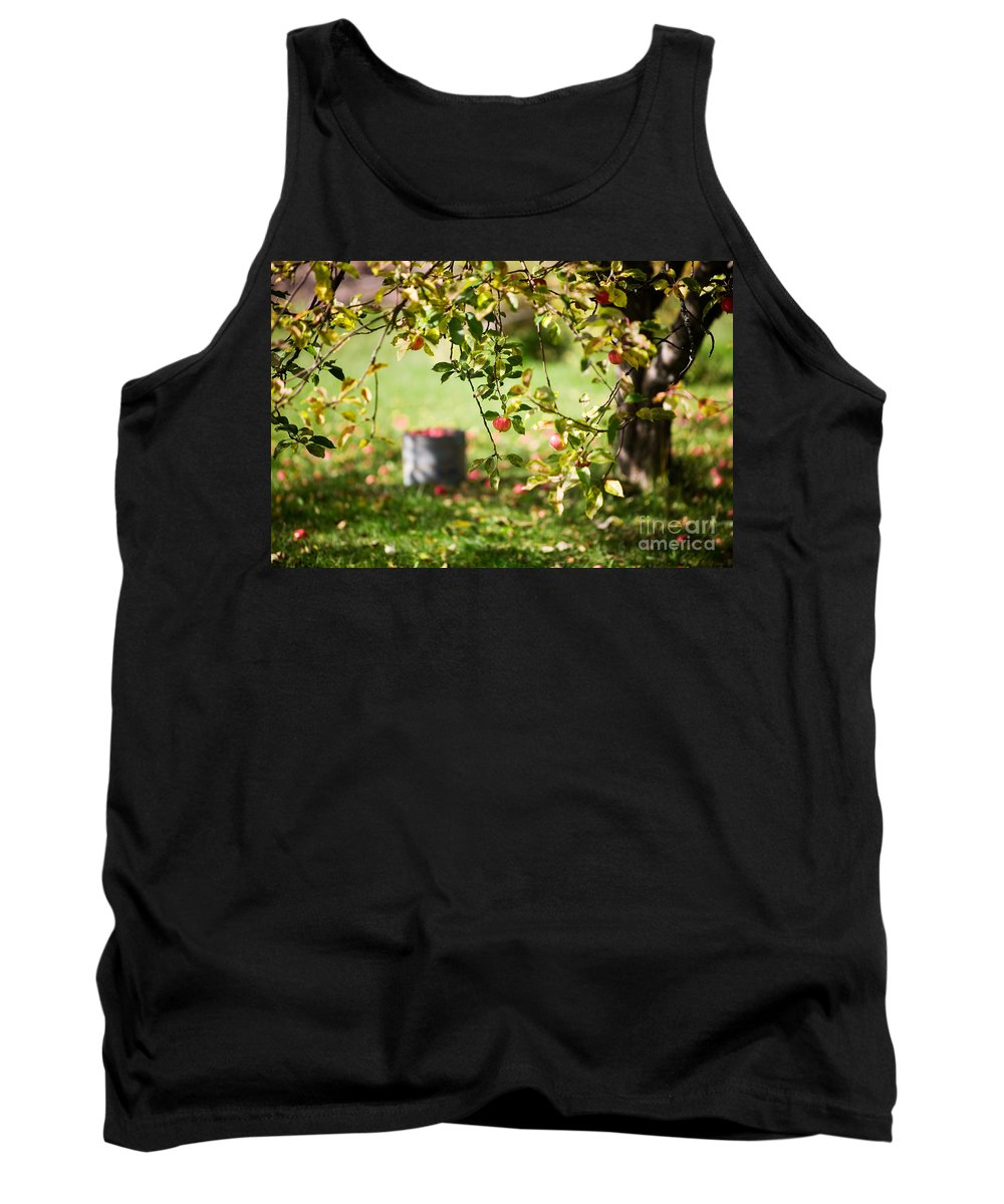 Kamo Tank Top featuring the photograph Apple Tree by Kati Finell