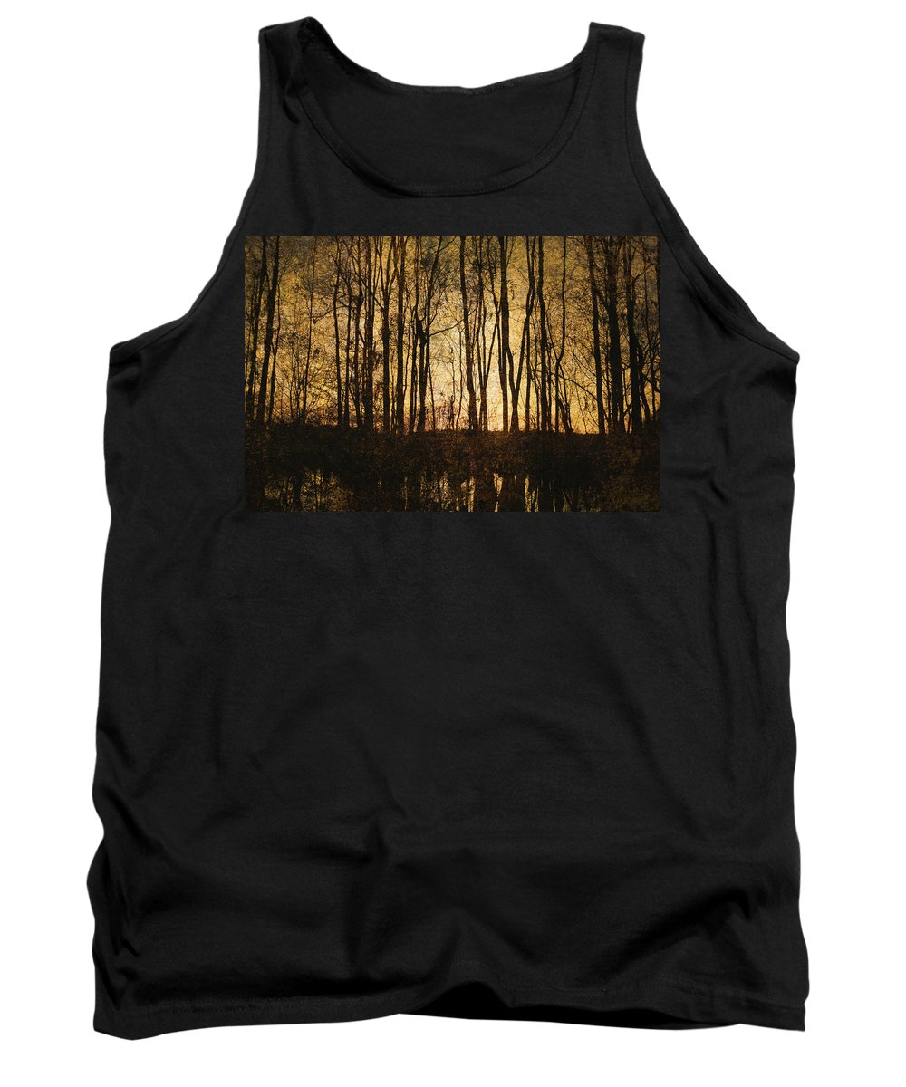 Art Tank Top featuring the photograph Fall Trees On A Lake by Skip Nall