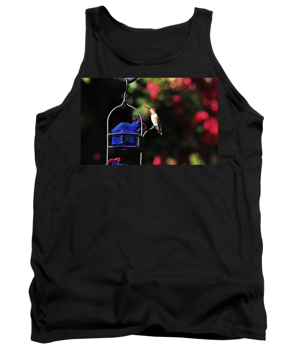 Hummers Tank Top featuring the photograph Beauty Defined by Lynn Bauer