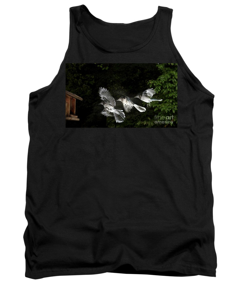 Animal Tank Top featuring the photograph Blue Jay In Flight by Ted Kinsman