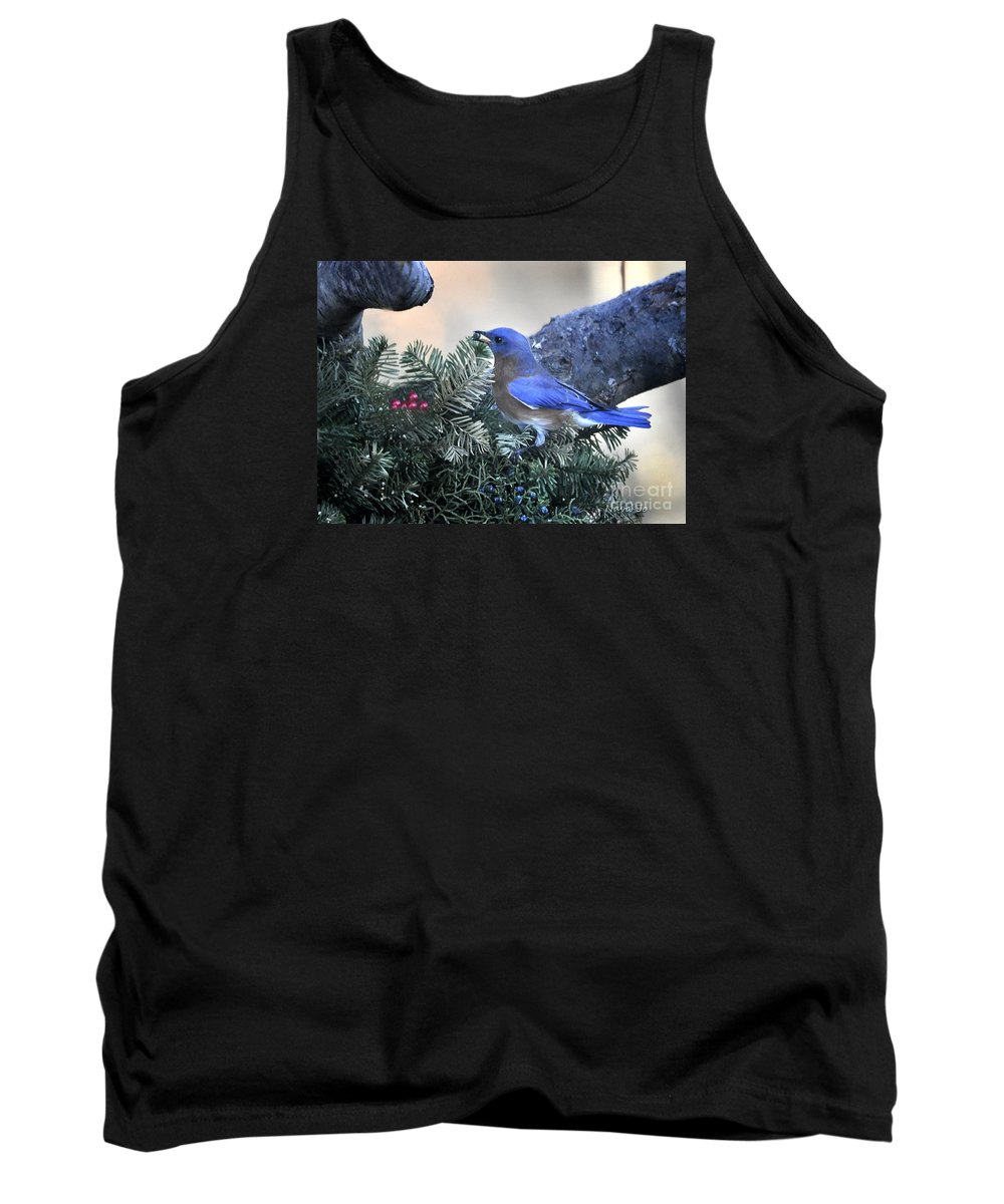 Nature Tank Top featuring the photograph Bluebird Christmas Wreath by Nava Thompson