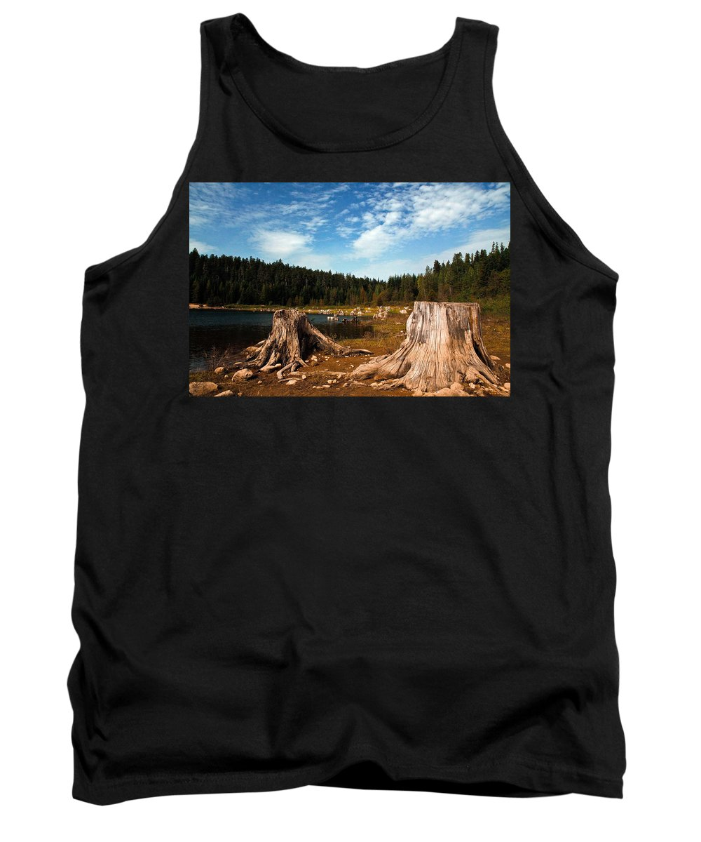 Clear Lake Tank Top featuring the photograph Clear Lake Oregon by Steve McKinzie