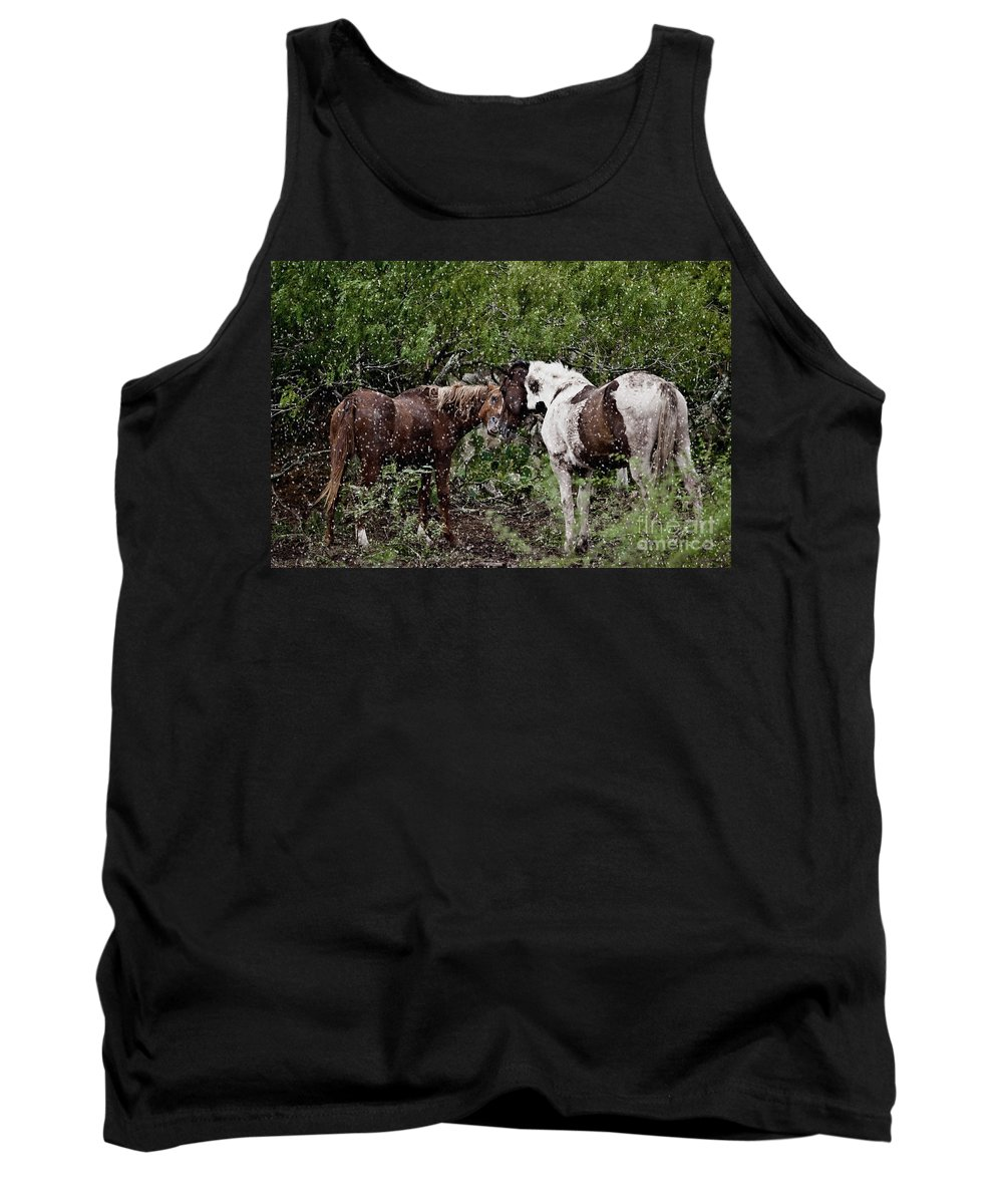 Horse Tank Top featuring the photograph Companionship by Dinah Anaya