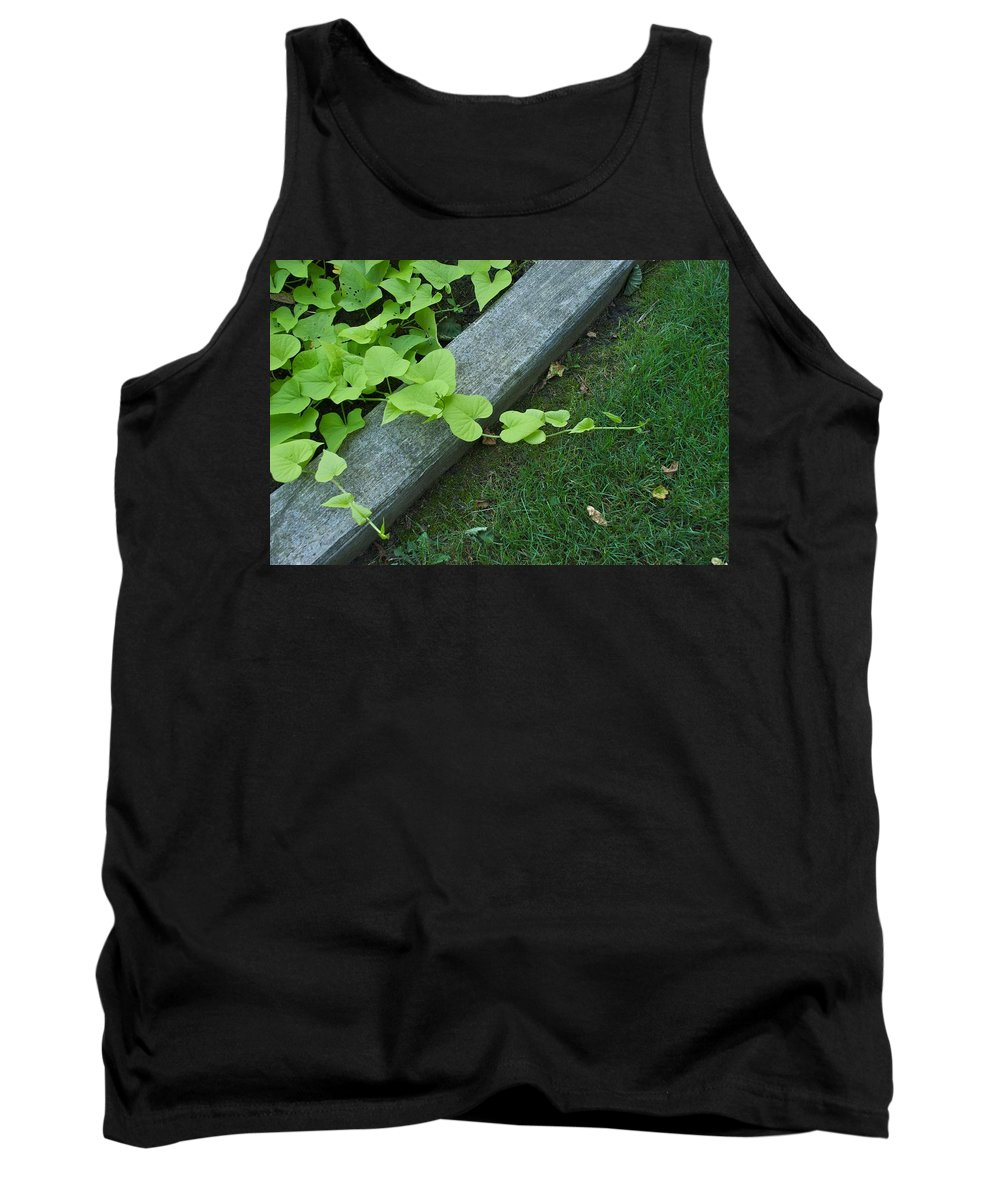 Flower Garden Tank Top featuring the photograph Creeper by Joseph Yarbrough