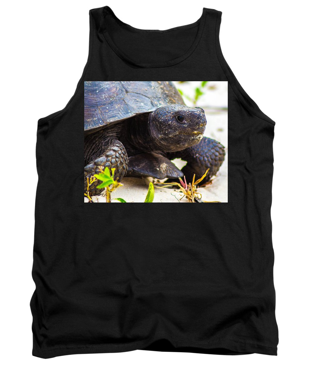 Tank Top featuring the photograph Curious Turtle by Shannon Harrington