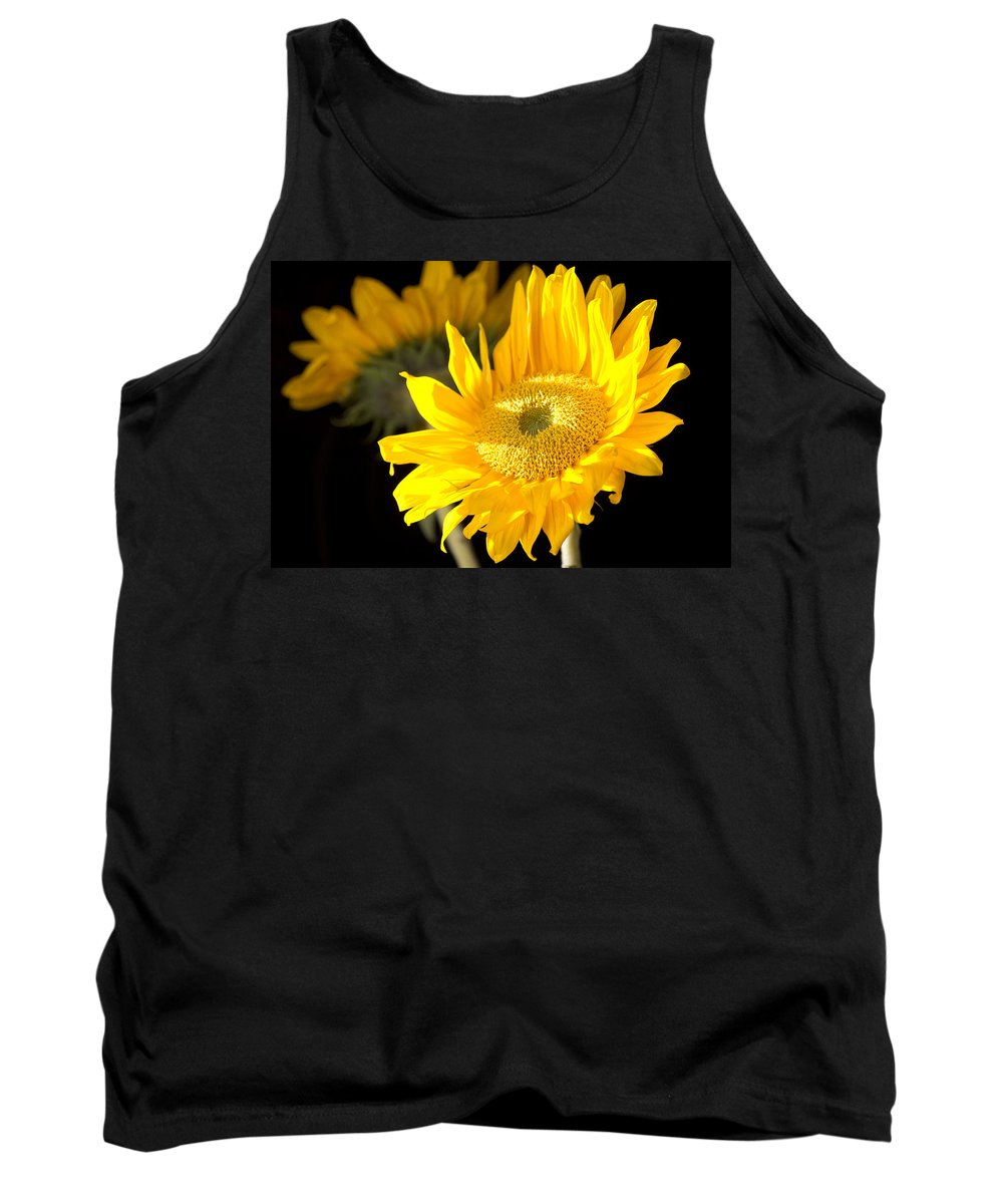 Sunflower Tank Top featuring the photograph Early Morning Sunrays by Douglas Barnard