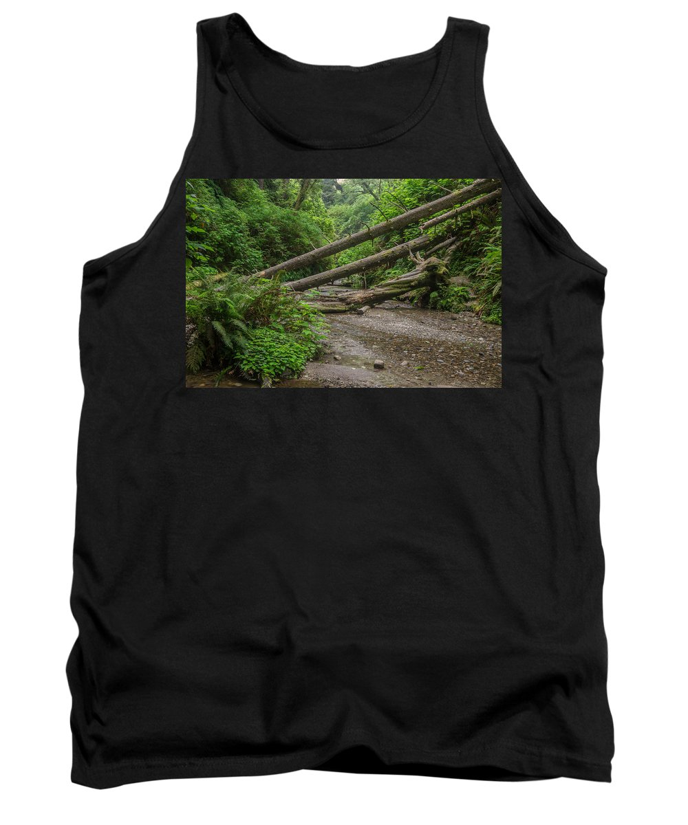 Fern Canyon Tank Top featuring the photograph Entrance To Fern Canyon by Greg Nyquist