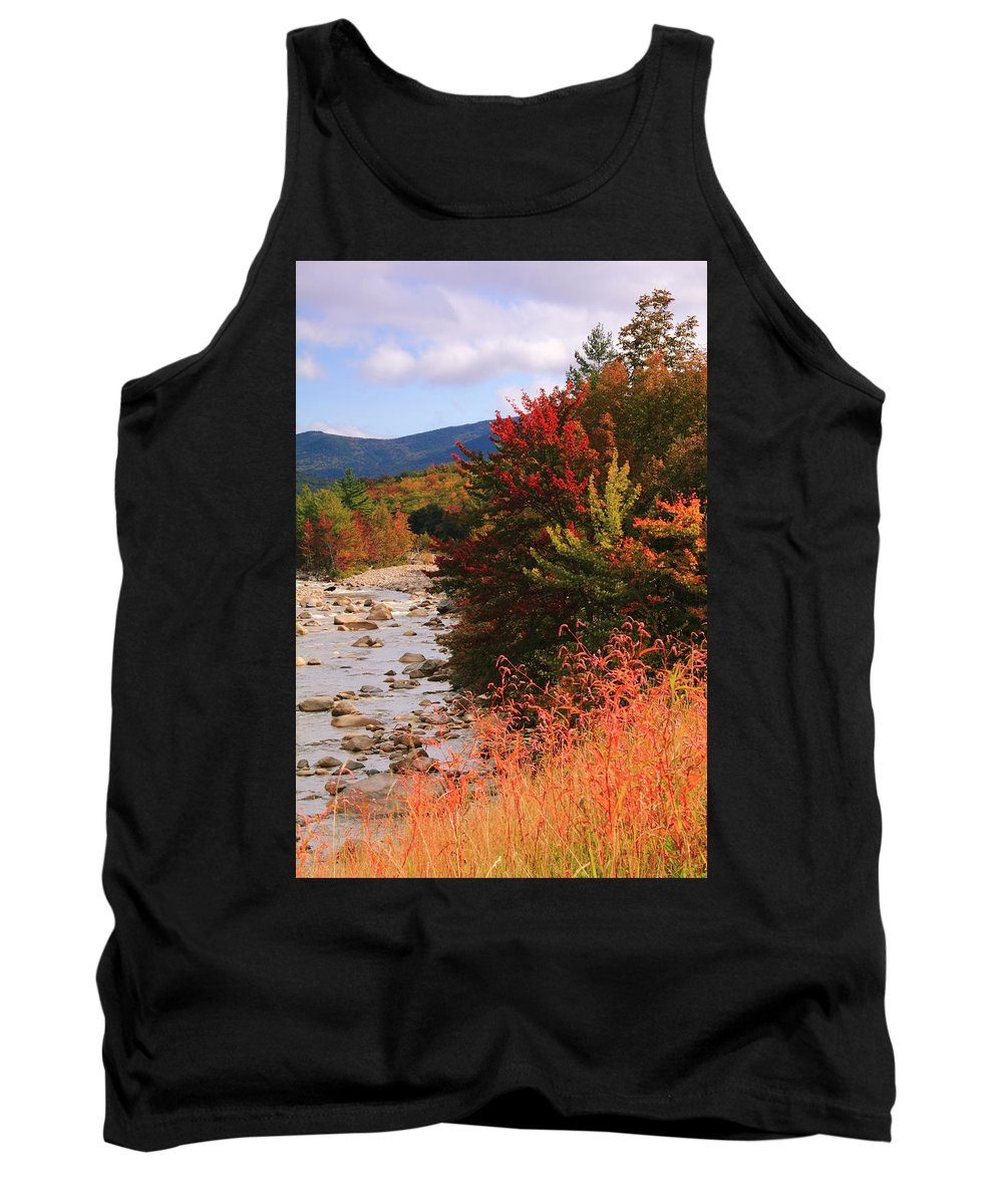 Fall Tank Top featuring the photograph Fall Color In The White Mountains by Roupen Baker