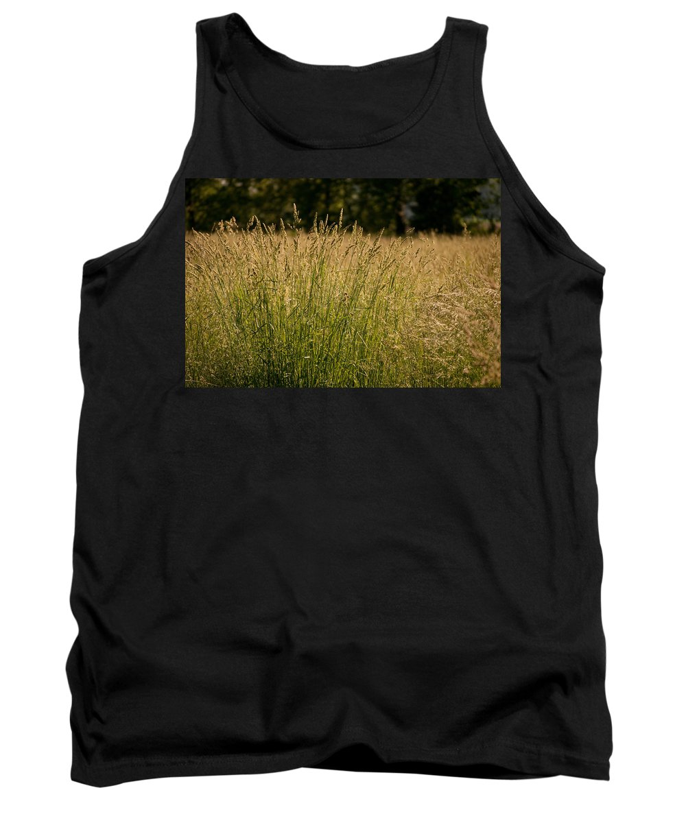 Nature Tank Top featuring the photograph Fallow Field by Paulette B Wright