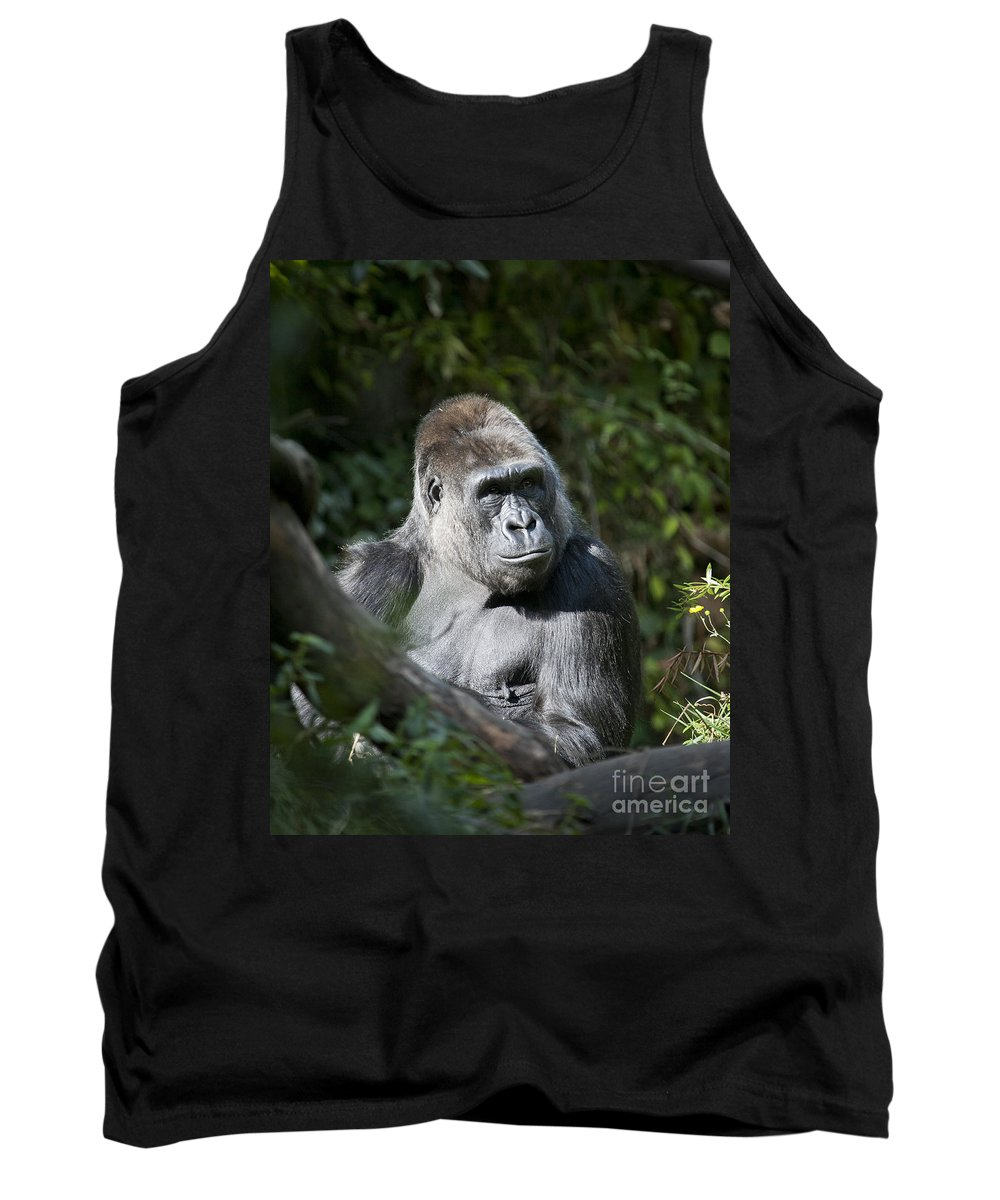 Gorilla Tank Top featuring the photograph Gorilla by Chris Dutton
