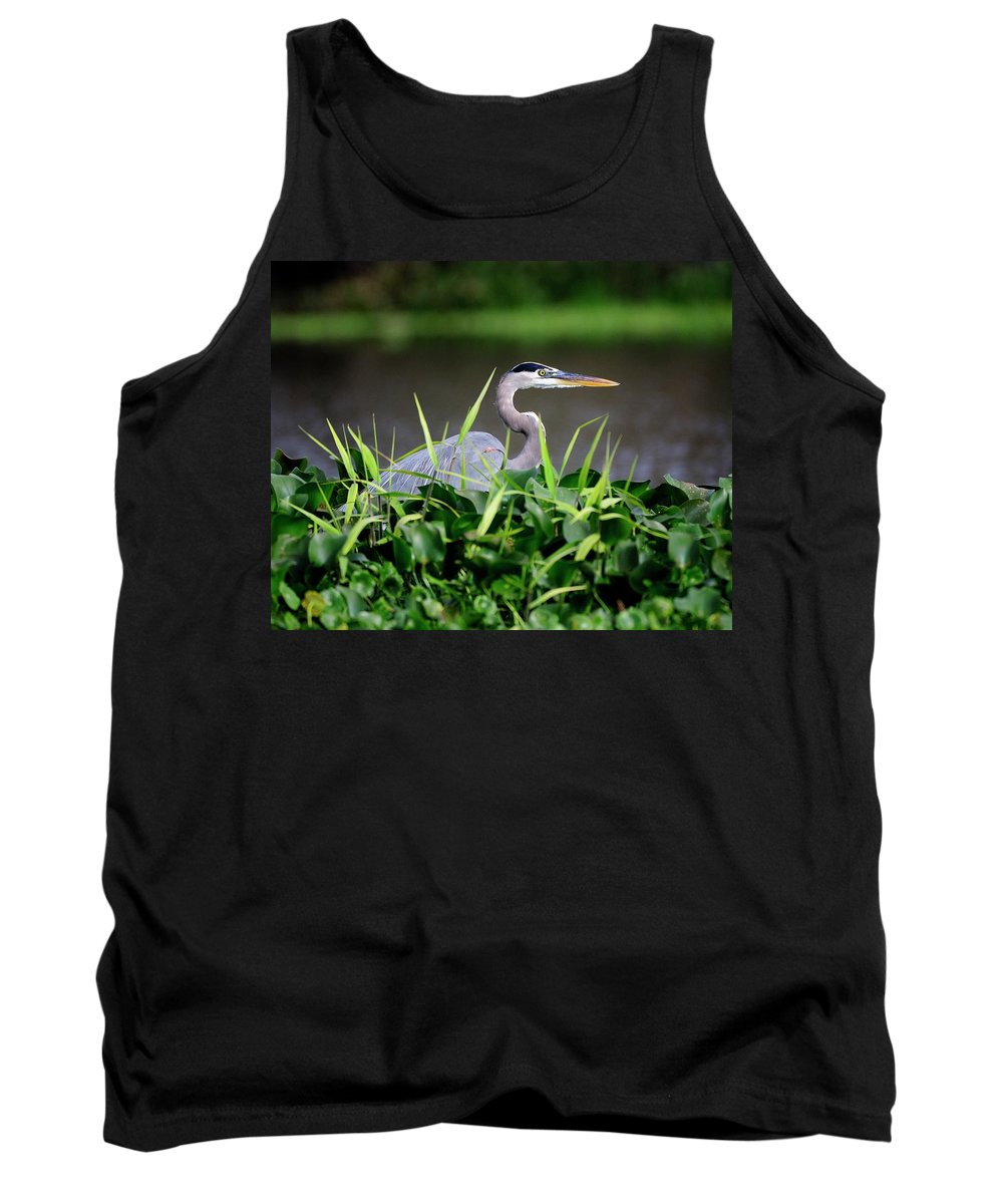 Great Tank Top featuring the photograph Great Blue Heron Hiding In The Grasses by Bill Dodsworth