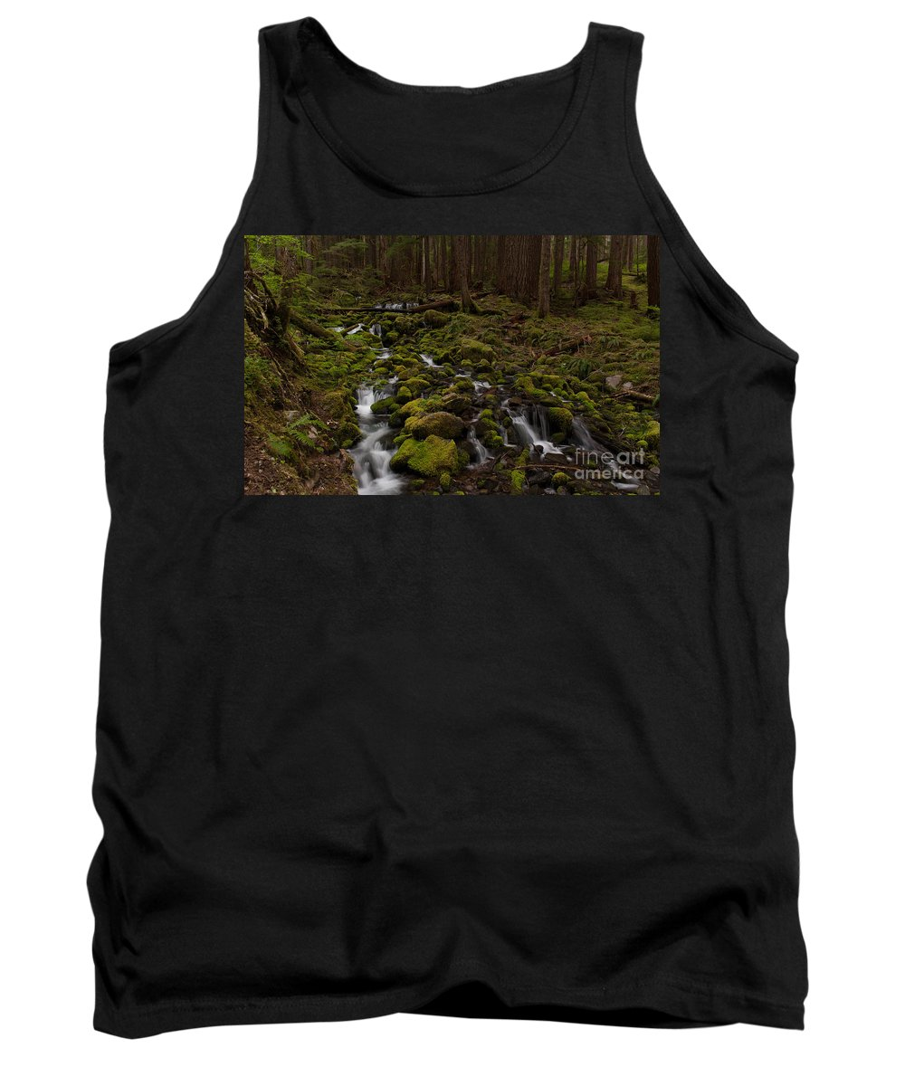 Olympic National Park Tank Top featuring the photograph Hall Of The Mosses by Mike Reid