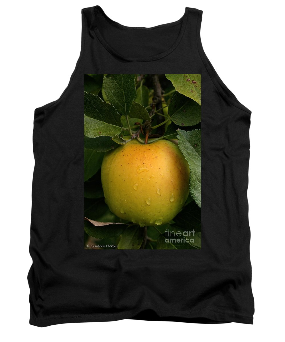 Landscape Tank Top featuring the photograph Healthy Glow by Susan Herber