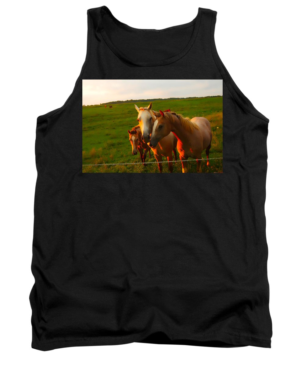 Horses In Pasture Tank Top featuring the photograph Horse Family Soft N Sweet by Randall Branham
