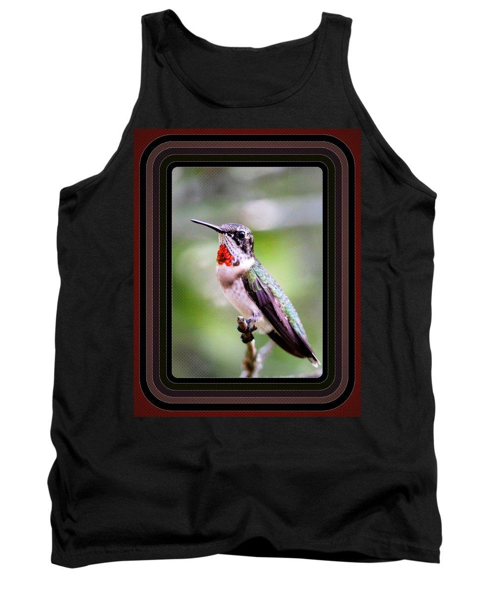 Hummingbird Card Tank Top featuring the photograph Hummingbird Card by Travis Truelove