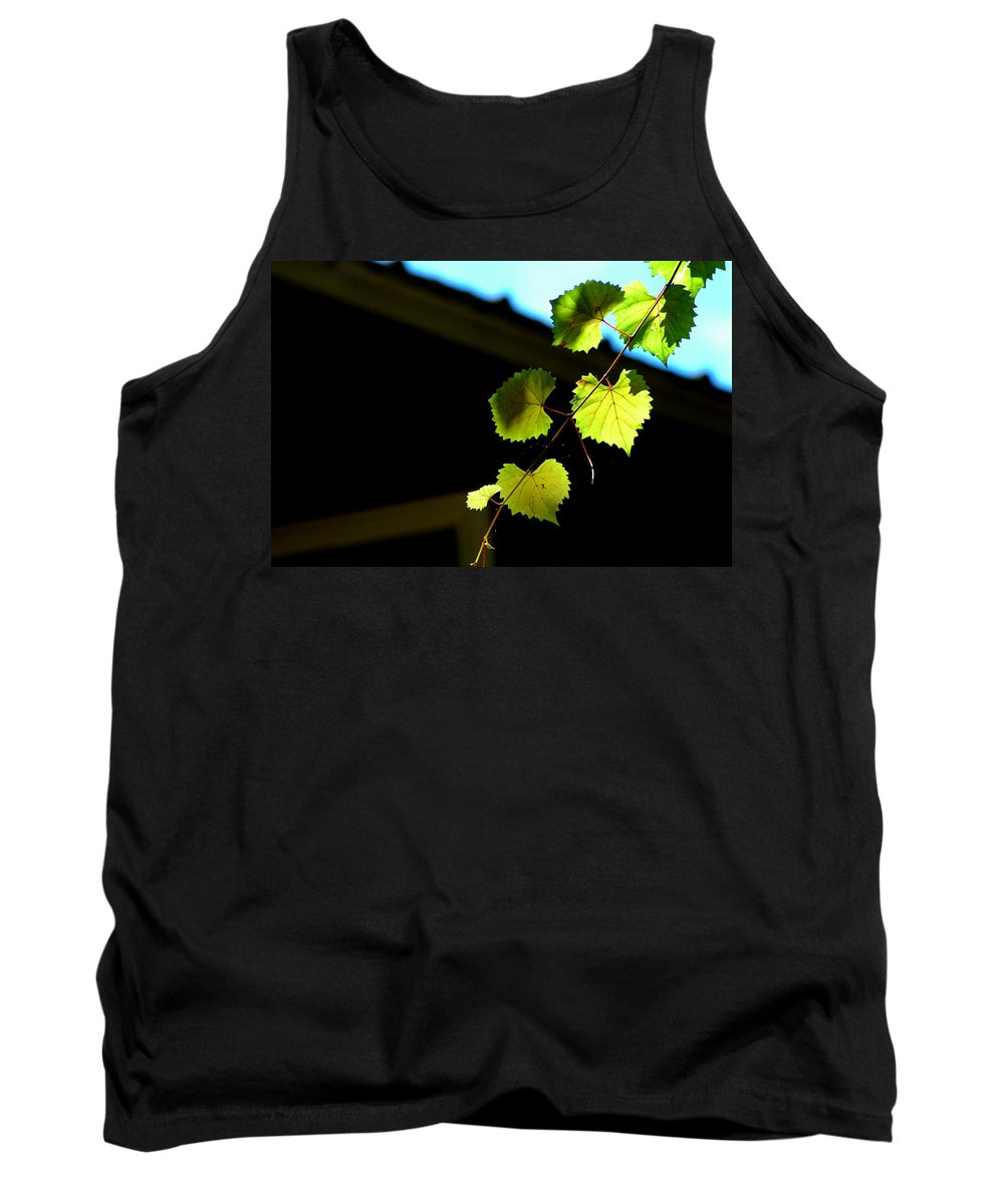 Ivy Tank Top featuring the photograph Ivy League by David Weeks