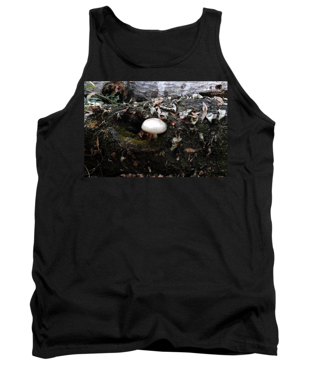 Fine Art Photography Tank Top featuring the photograph Life From Death by David Lee Thompson