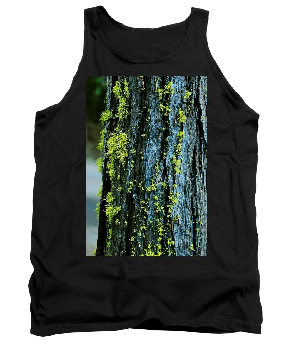 Moss Tank Top featuring the photograph Mossy Compass by Eric Tressler