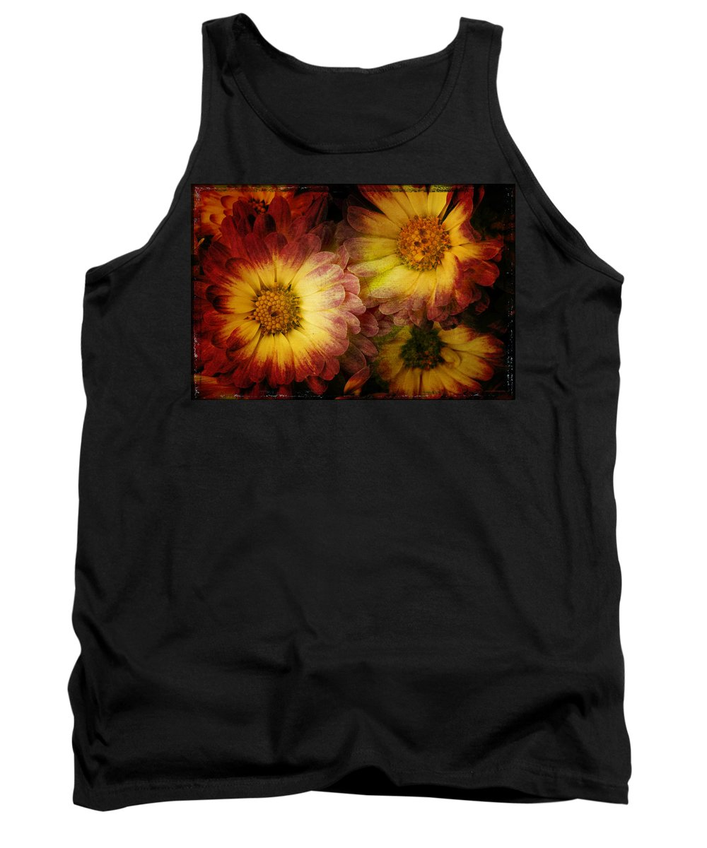 Chrysanthemum Tank Top featuring the photograph Mums by Ron Jones