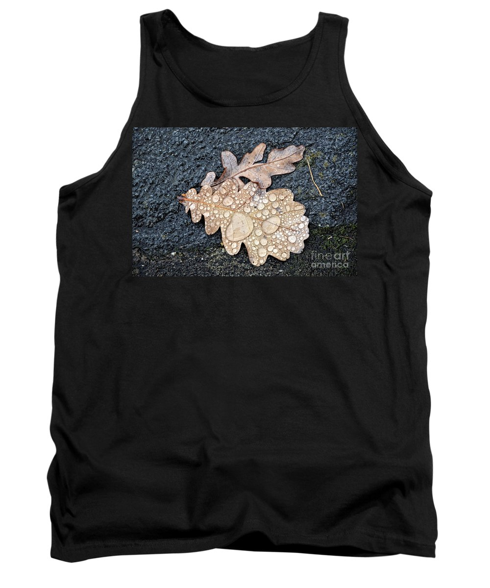 Leaf Tank Top featuring the photograph Oak Leaves by Mats Silvan