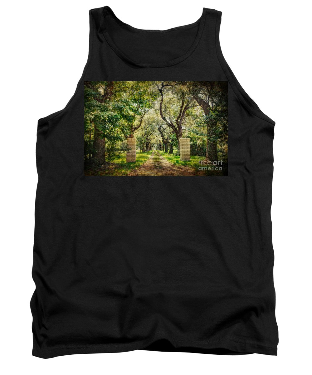 Tree Tank Top featuring the photograph Oak Tree Lined Drive by Joan McCool