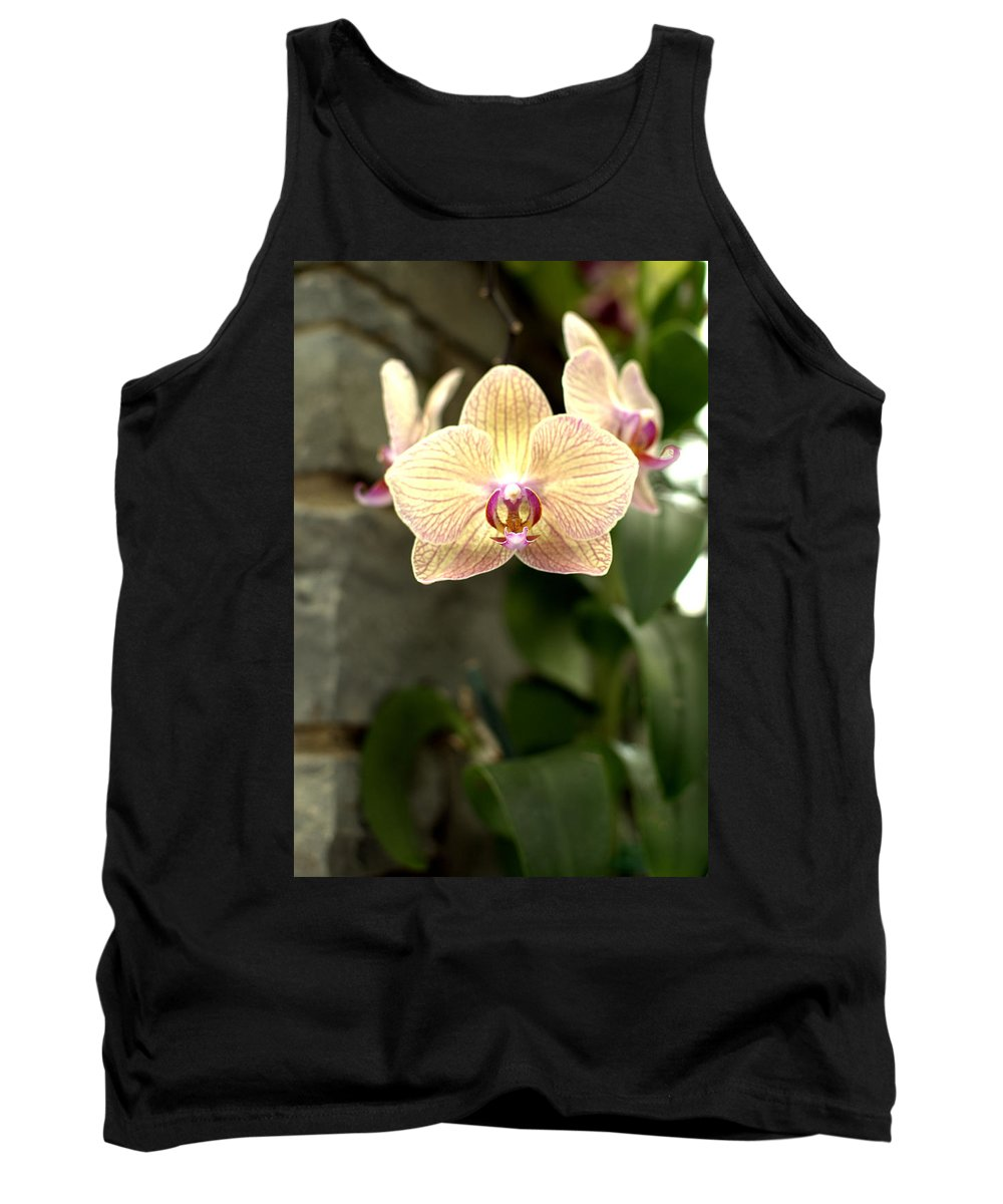 Orchid Tank Top featuring the photograph Orchid by Floyd Menezes